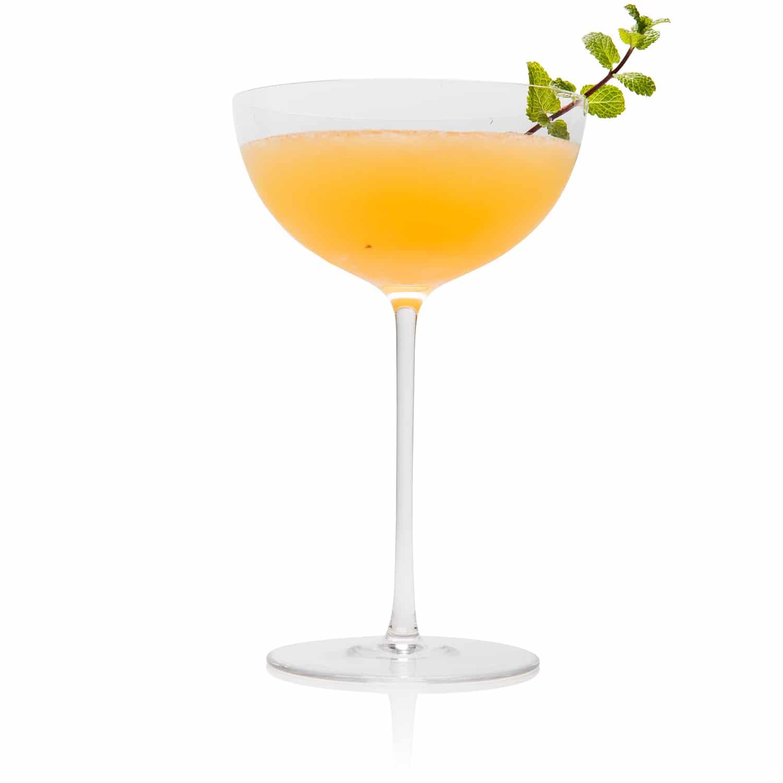 Daisy De Santiago Cocktail Recipe